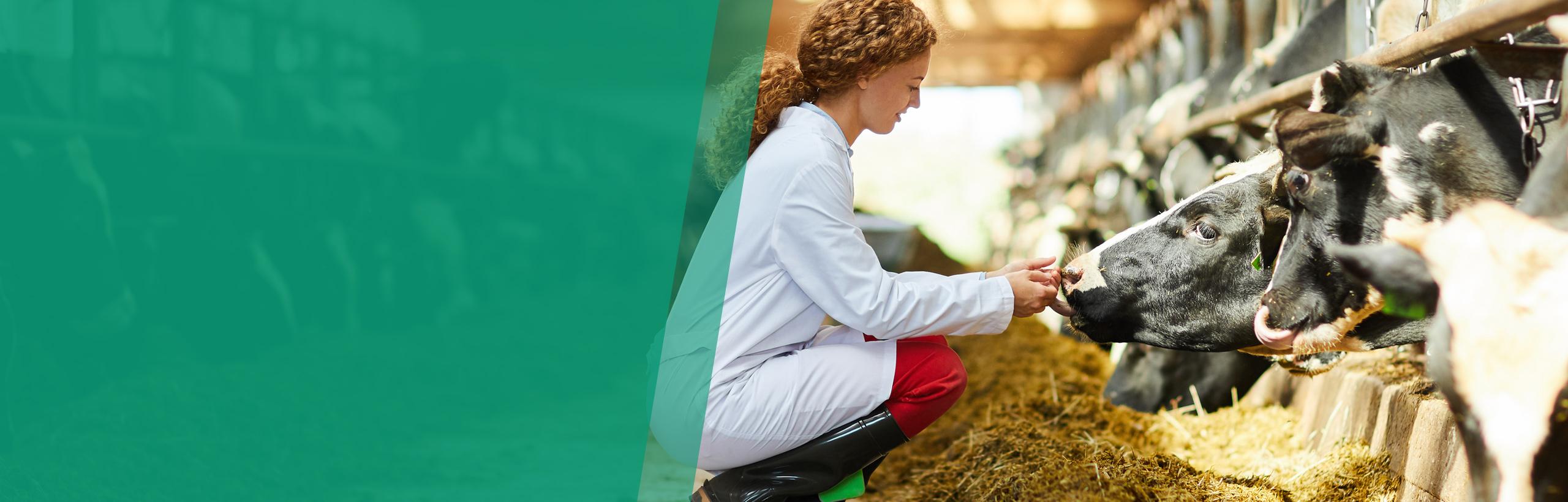 Dodavatel etického sortimentu nejen pro veterinární péči
